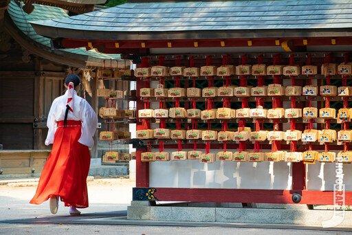 神社寺廟2